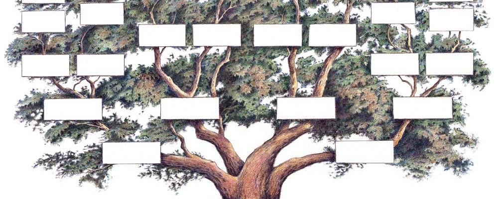 Četrti četrtek – radionice razmjene vještina: Kako izraditi vlastito rodoslovno stablo?